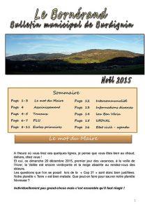 bornerand-2015